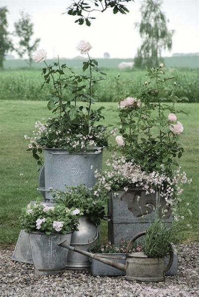 Цветы в ведрах на даче