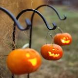 Готовимся к 31 октября: 25 идей, что сделать с тыквой на Хэллоуин