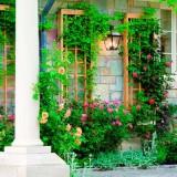 Декорируем зеленью наши стены: идеи сада из вертикальных грядок