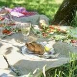 Пикник в винтажном стиле: идея для весеннего отдыха на природе