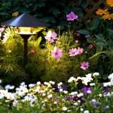 Освещаем дачный участок: идеи для ландшафтных дачных светильников