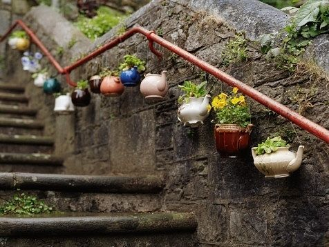 Сад цветы своими руками фото