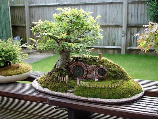 Миниатюрные сады фото как сделать