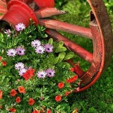 Колесо от старой телеги для украшения сада