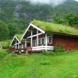 Норвежские дома с зелеными крышами