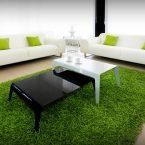 На природе: зеленый ковер в интерьере гостиной