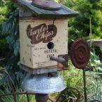 Домики для птиц на вашей даче: 35 сумасшедших идей для скворечника