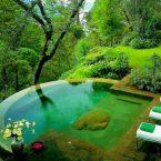 Время искупаться! 30 идей для собственного бассейна во дворе на улице