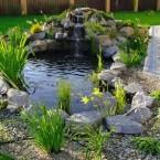 Как украсить пруд на даче своими руками