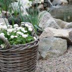 Цветы в плетеных корзинах: дома и в саду